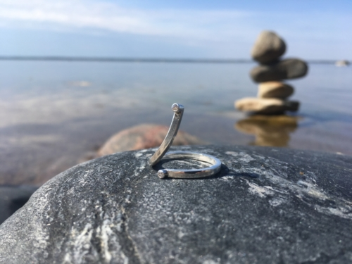 Sõrmus Luik